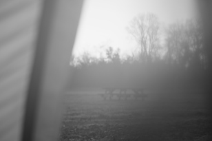 Morning. School field, bench, trees, and fog.